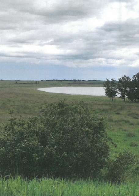 Half section (309 acres) south of Erskine in Stettler County
